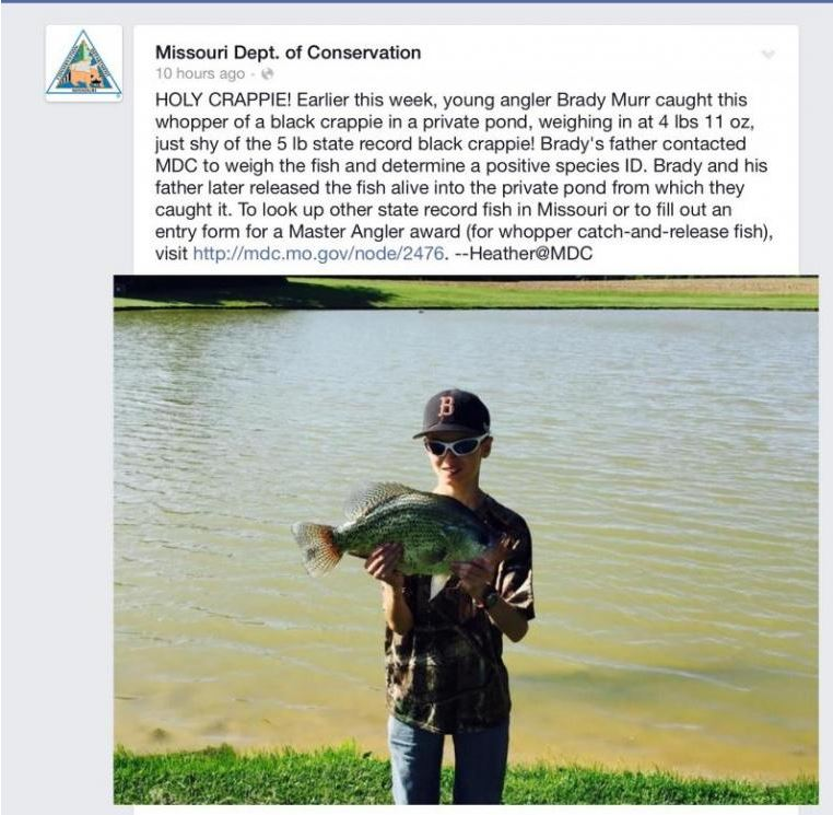 A crappie and a half stockton lake ozarkanglers com forum for Stockton fishing report