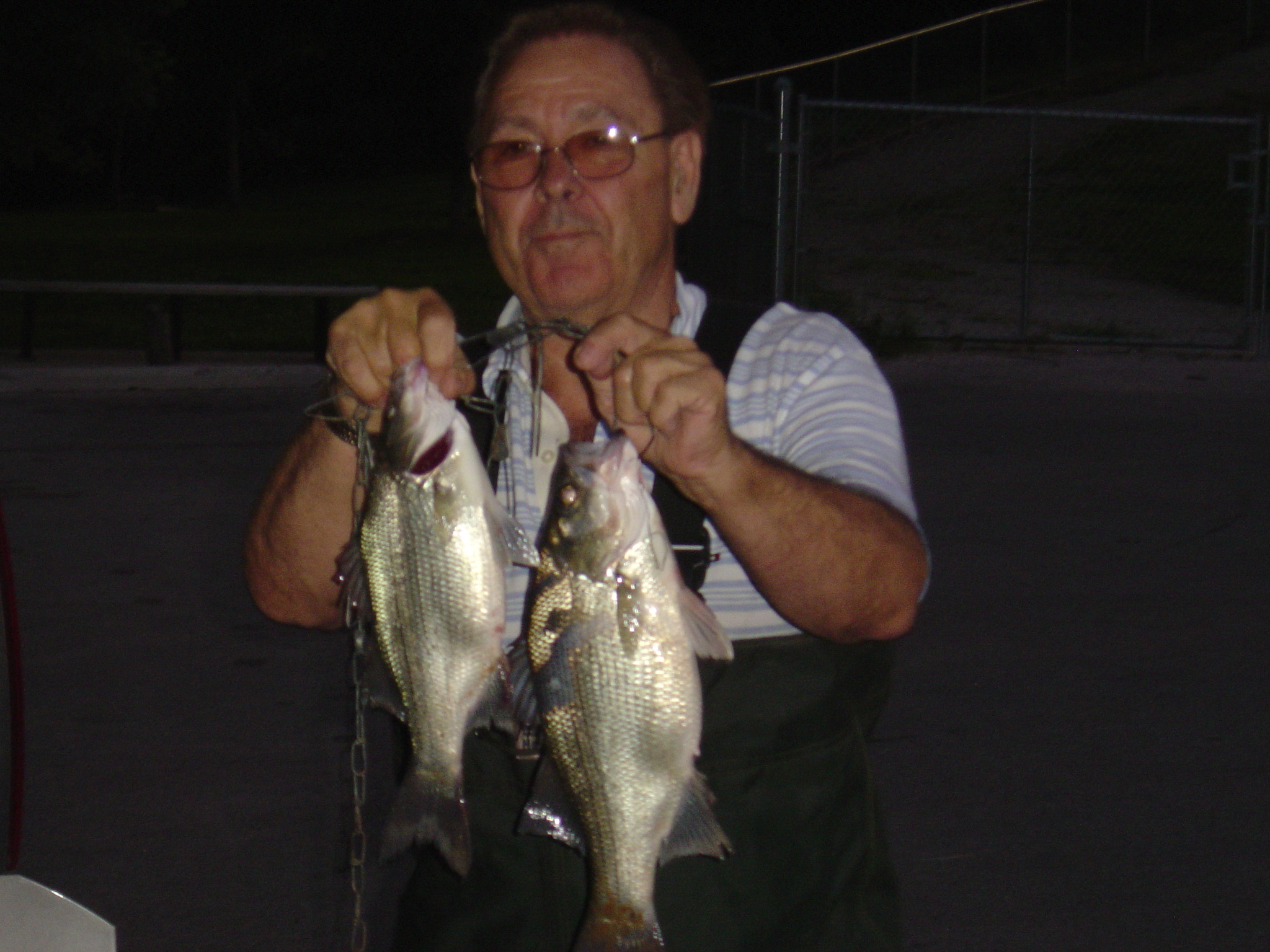 Fishing report 6 25 08 upper lake taneycomo for Point lookout fishing report