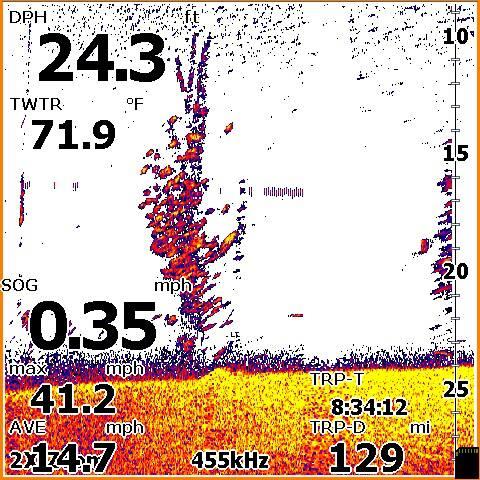 Fish finder training screenshots interpretations for Academy fish finder