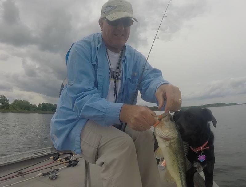 Fishing report stockton lake ozarkanglers com forum for Stockton lake fishing report