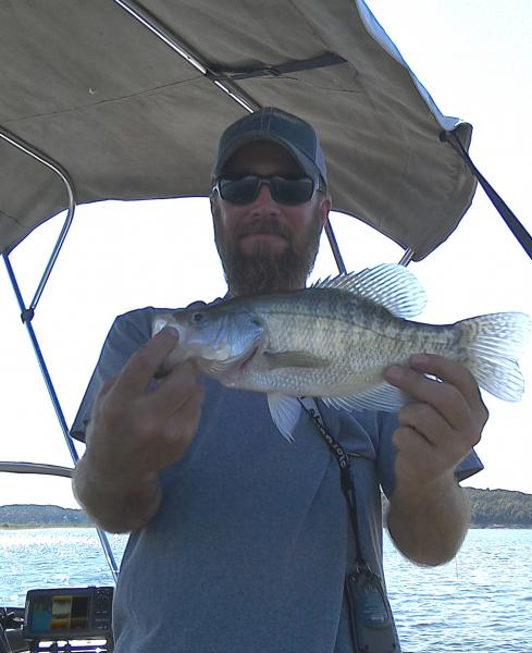 First time on truman truman lake ozarkanglers com forum for Fishing report truman lake