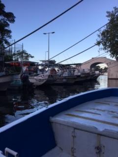 Bone fishing in cozumel 12 29 16 general angling for Fly fishing cozumel