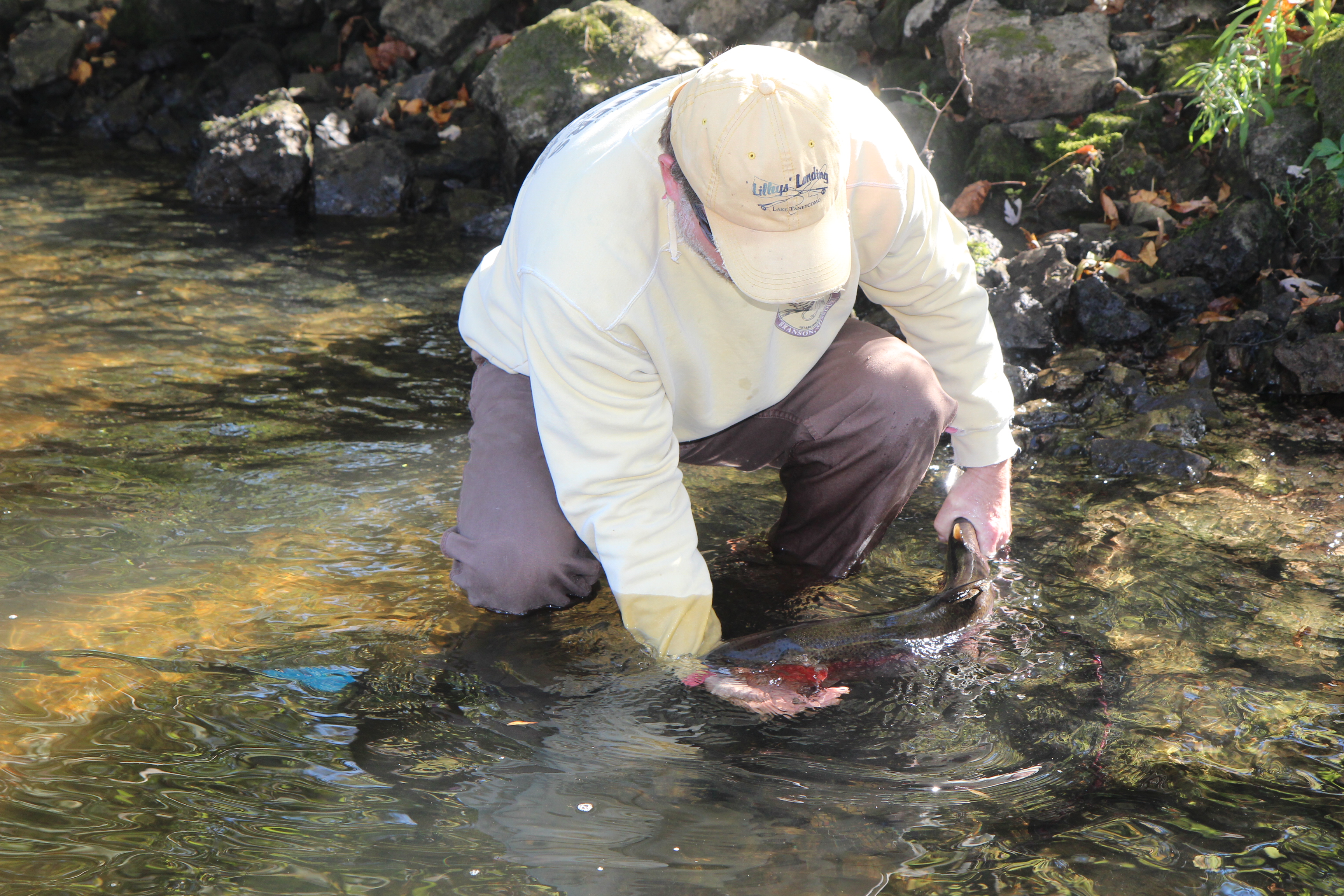 Ozark anglers comprehensive fishing news and reports for for Blue creek fishing report