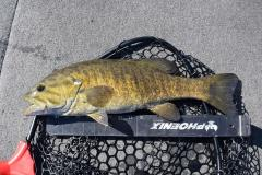 MAR11smallie.jpg